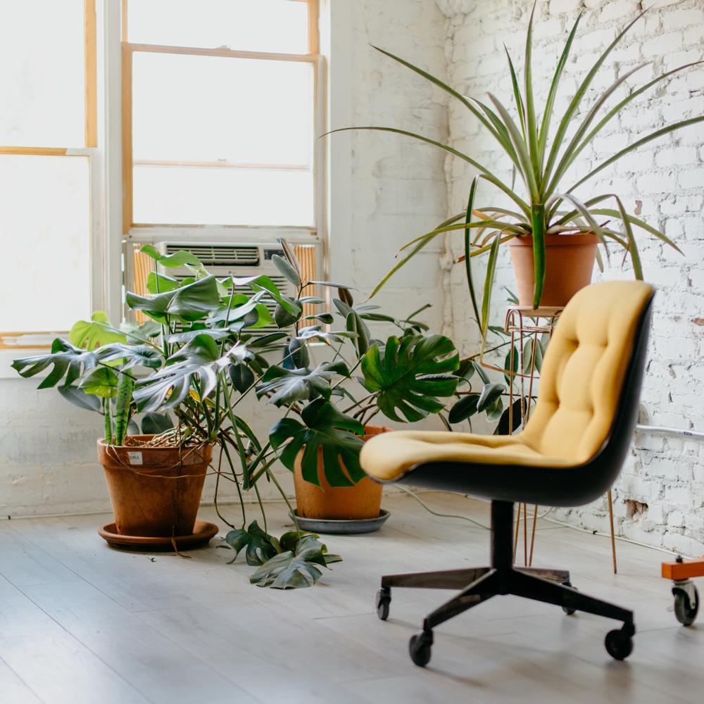 Choosing an Office Location